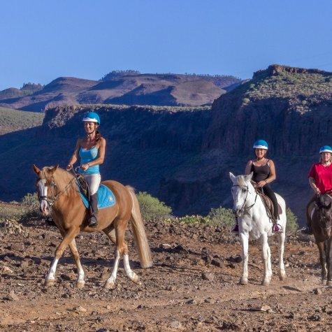 Wandeling te paard