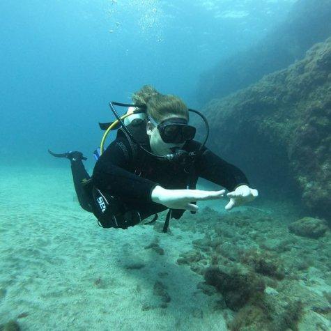 Cursus Open Water Diver