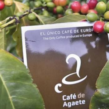 Eilandtour + Koffieplantage
