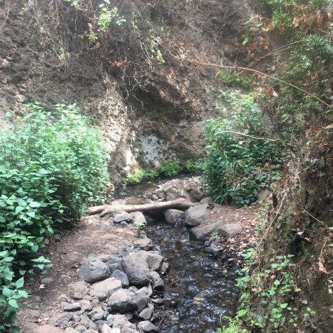 Wandelen door de Barranco de los Cernícalos